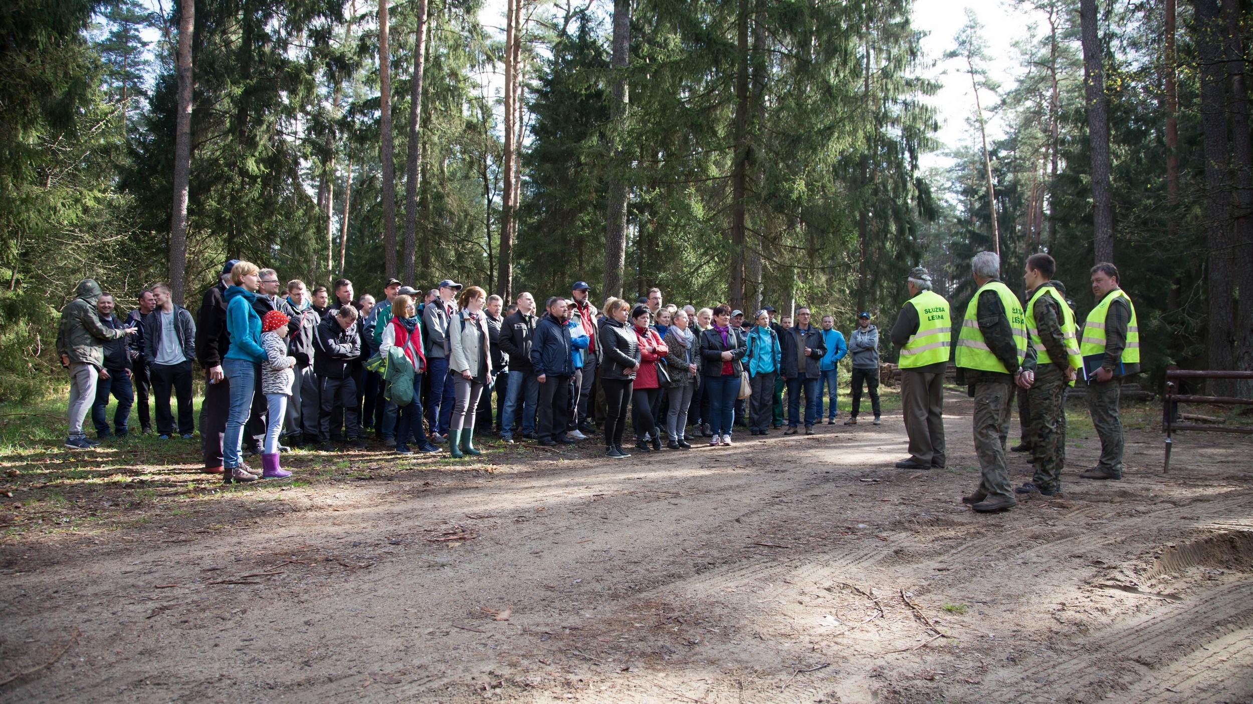 światowy dzień lasu